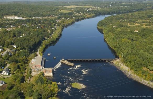 Photo courtesy of Bridget Besaw/Penobscot River Restoration Trust