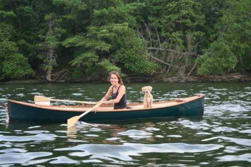 dog boat2