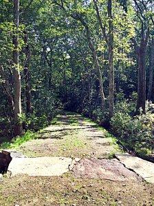 A newly built granite bridge over Wine Bottle Brook in the Grills Sanctuary in Hopkinton RI.