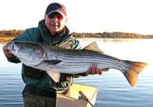 Fly fisherman Ed Lombardo