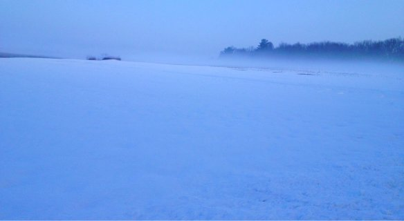 Winter scene cropped